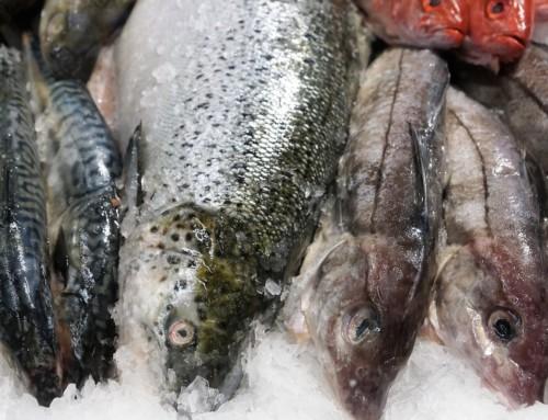 Prodotti della pesca venduti e somministrati con più chiarezza